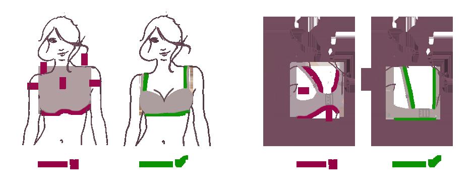 Der korrigierende Büstenhalter für die kleine Brust
