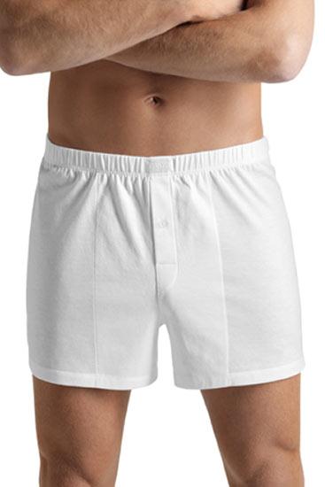 Abbildung zu Boxershorts (073505) der Marke Hanro aus der Serie Cotton Sporty