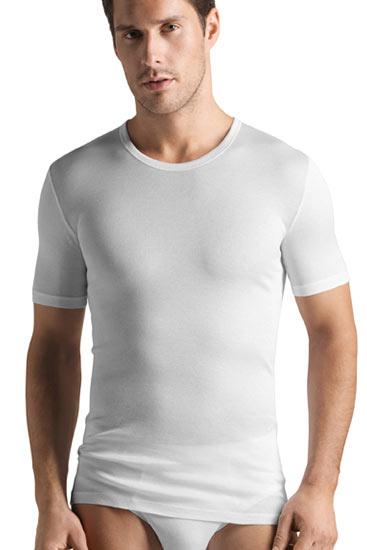 Abbildung zu Shirt (073663) der Marke Hanro aus der Serie Cotton Pure