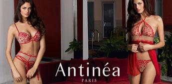 Precieux Desir von Antinea