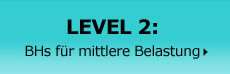 #alt-level-2